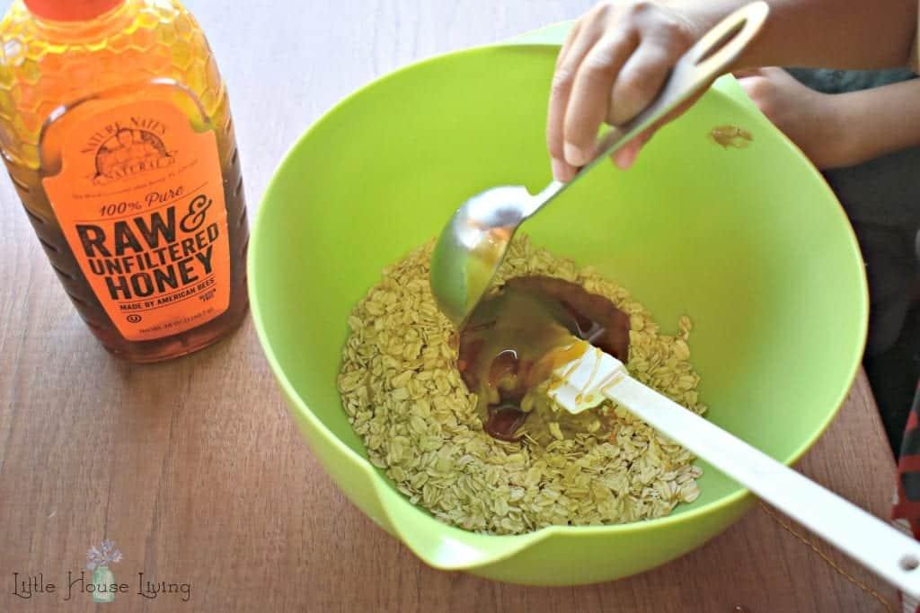 Honey in Oatmeal Bites