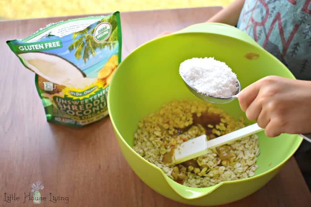 Coconut in Oatmeal Bites