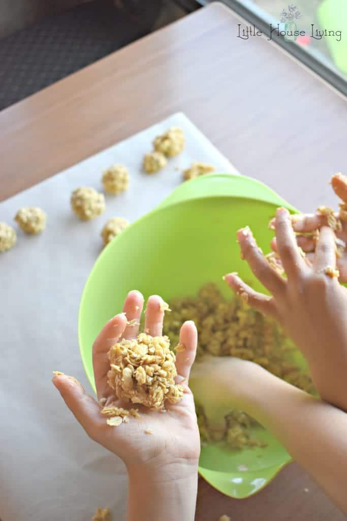 Making Oatmeal Bites