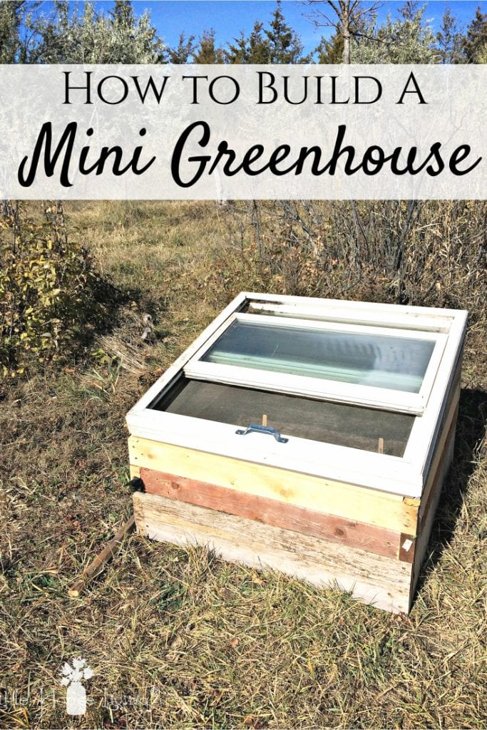 Want to extend your growing season and enjoy homegrown vegetables as long as possible? Here's how to build a simple mini greenhouse for free or very little! #greenhouse #gardening #wintergardening #wintergarden #growyourown