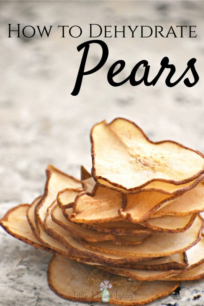 Dehydrated pears can be a delicious snack and a great way to use in-season produce. Here is a simple guide to teach you how to dehydrate pears so that you can make the most of this delicious fruit! #dehydratedpears #dehydratingfruits #driedfruits #driedpears #howtodrypears