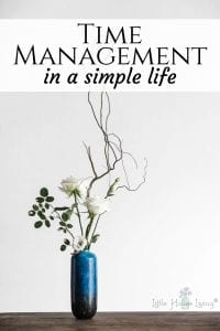 Time Management in a Simple Life