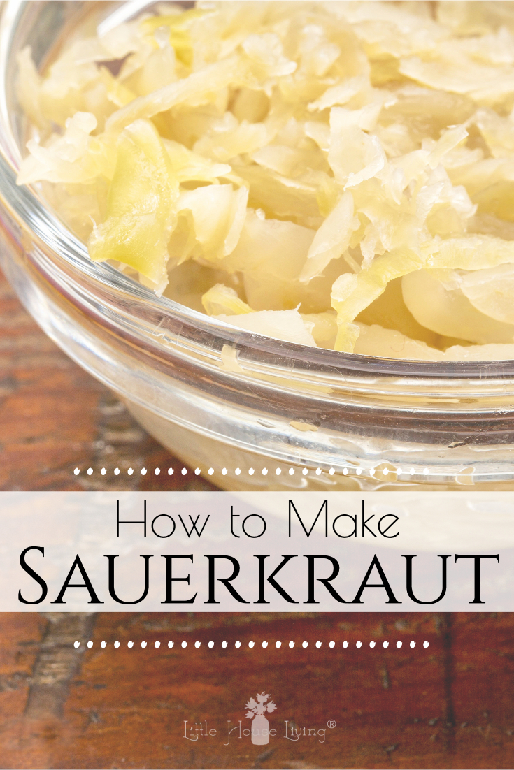 Did you grow cabbage in your garden this year? Here's a yummy way to preserve it by learning how to make Sauerkraut!