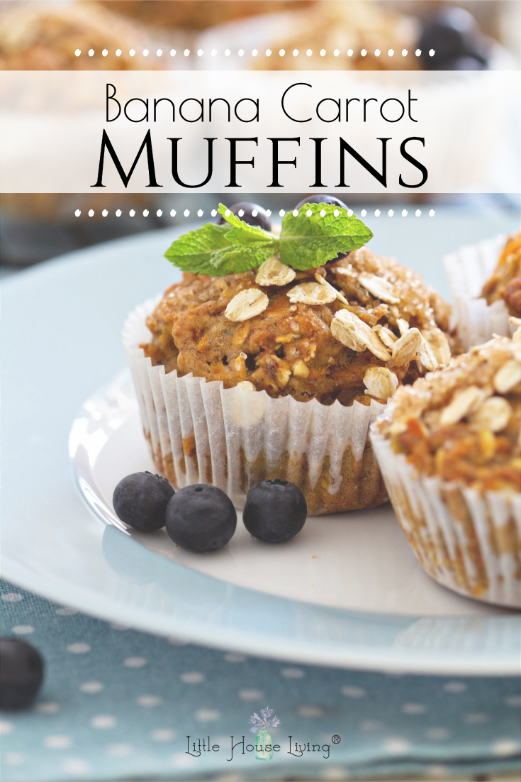 Looking for a great new recipe? These Banana Carrot Muffins make a great breakfast that the whole family will enjoy.