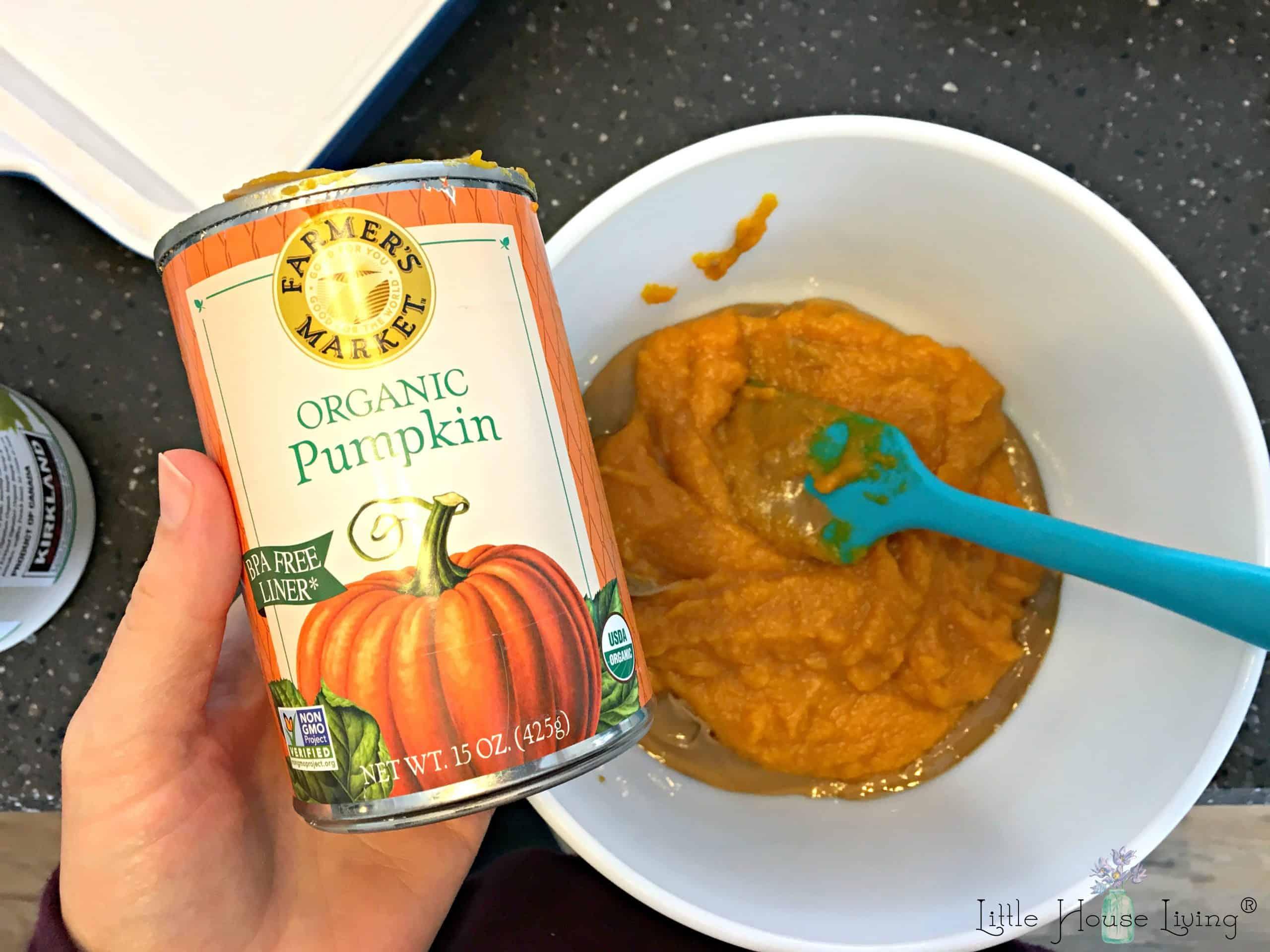 Pumpkin in Brownies