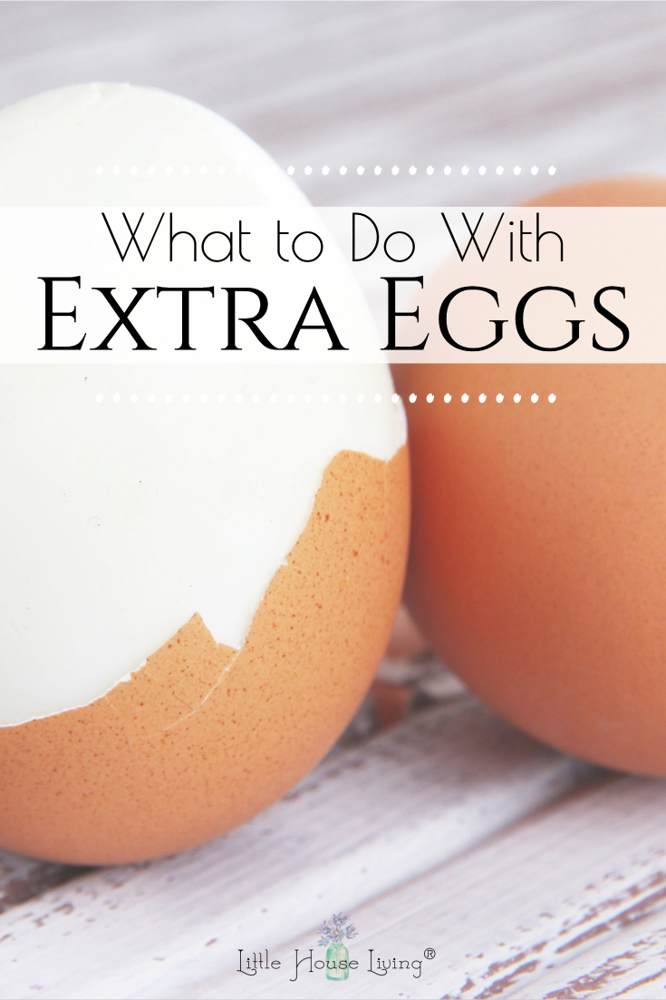 More eggs than you know what to do with right now? Here are some ideas and recipes on how you can use up all those extra eggs!