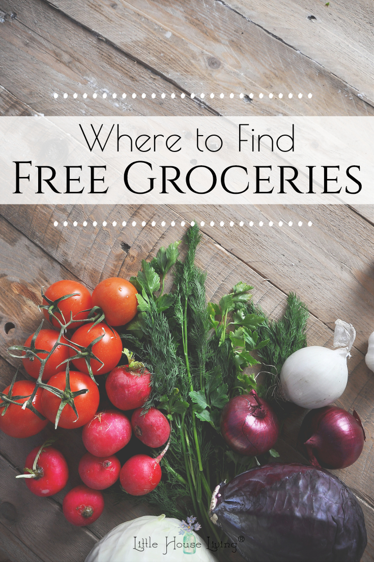 Are you struggling to fit groceries into your budget right now? There are many places where free groceries can be found if you know where to look!