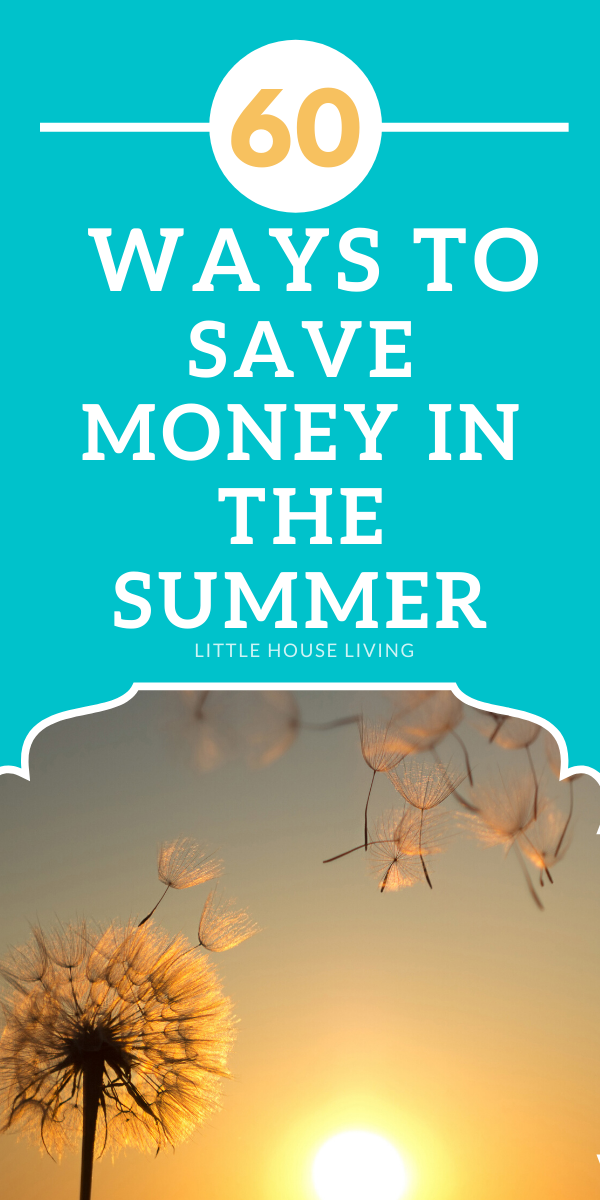 Need to save more money this summer? Here are some simple ideas on how you can save money in the summer.