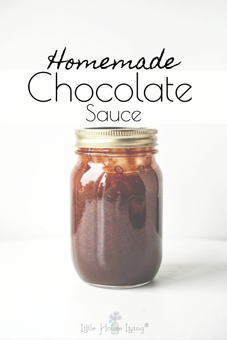 Looking for the perfect topping for your next bowl of ice cream or plate of brownies? The frugal Homemade Chocolate Sauce is SO simple and costs very little to make!