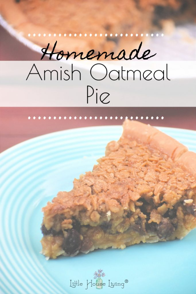 Looking for the next treat to make for your family? If you love old fashioned recipes, you are going to love making this frugal and simple Amish Oatmeal Pie!