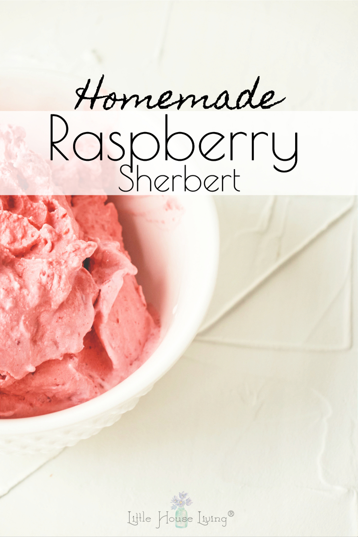 Looking for the perfect way to cool off this summer? This Raspberry Sherbert Recipe is ridiculously easy with only 3 ingredients!