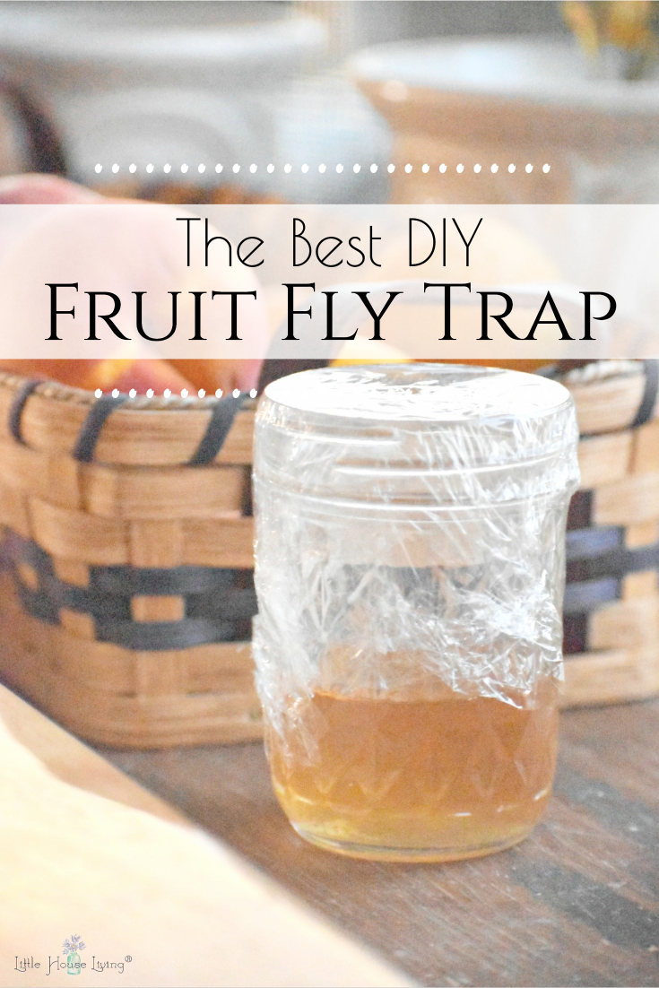 Pesky fruit flies bothering your produce in your kitchen? Sometimes it's impossible to put all of your fresh fruit and veggies in the fridge so it has to sit out! Here's a simple fruit fly killer to keep them from coming back.