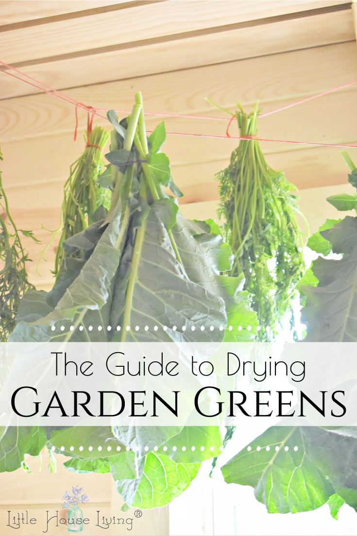 Want to make the most of your garden this year and prevent food waste? Here are some easy ways to start drying greens that you didn't even realize that you could eat!