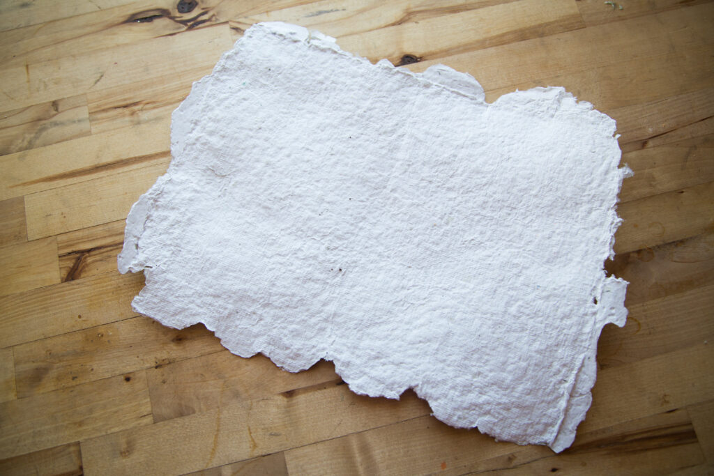Dried Paper