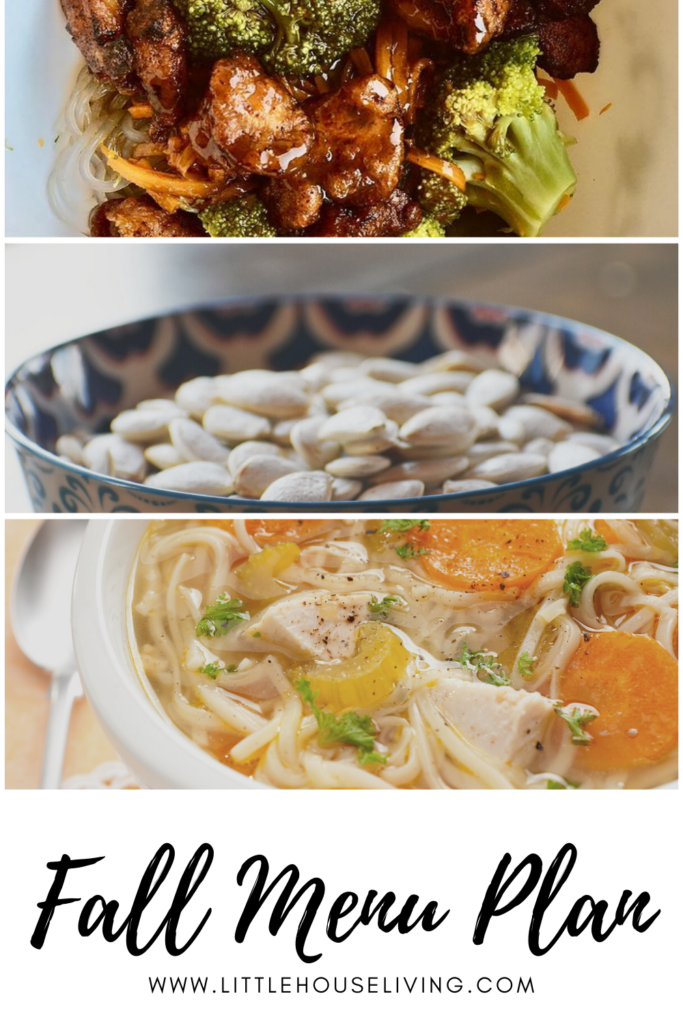 Need some meal planning inspiration? Here's what we are having this week!