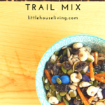 Looking for a simpler snack to make for the kids when you need something on the go? Here are some Nut Free Trail Mix ideas that you can put together!